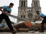 Carpenters Wow Public with Medieval Techniques at Notre Dame